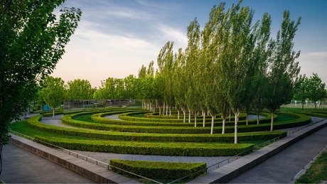 Beijing_garden_expo_-_5_years_later